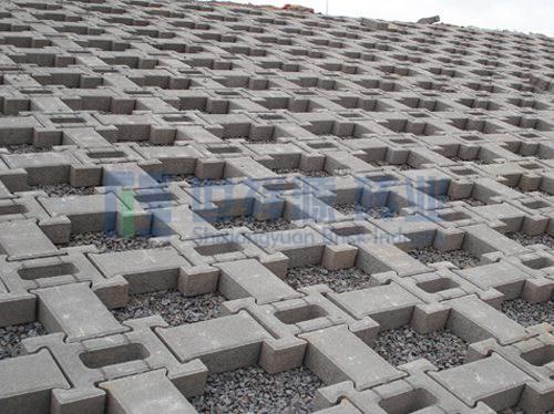 护坡砖 (3)